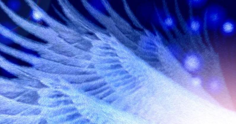 Asas dos anjos